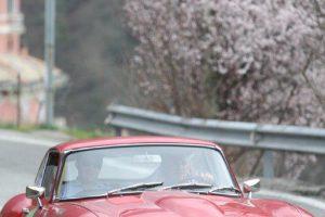 Photos | Cristiano Luzzago consulente auto classiche image 22