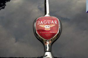 jaguar xk 140 fhc 1956 24