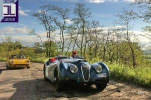 jaguar xk120 roadster www.cristianoluzzago.it 39 328 2454909 5