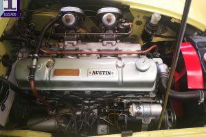 1960 austin healey 3000mk1 www.cristianoluzzago.it Brescia Italy (30)