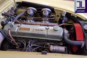 AUSTIN HEALEY 3000 MK1 www.cristianoluzzago.it Brescia Italy (35)