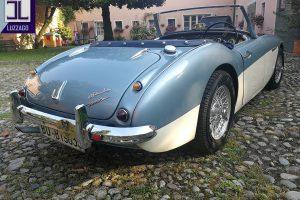AUSTIN HEALEY 3000 Mk1 www.cristianoluzzago.it Brescia Italy (14)