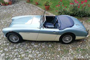 AUSTIN HEALEY 3000 Mk1 www.cristianoluzzago.it Brescia Italy (9)
