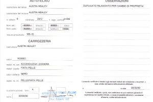 AUSTIN HEALEY 3000MK3 www.cristianoluzzago.it Brescia Italy (28a