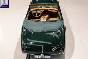 AH 3000 MK2 1961 DENIS WELCH www.cristianoluzzago.it brescia italy (10)