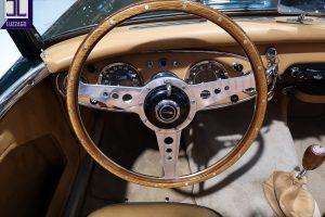 AH 3000 MK2 1961 DENIS WELCH www.cristianoluzzago.it brescia italy (37)